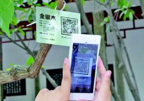 AI植物识别系统-AI植物科普-植物智能识别系统-城基生态智慧公园